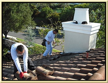 Roof Repair Dove Canyon