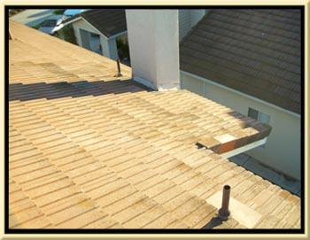 Silverado Canyon Tile Roof Repair